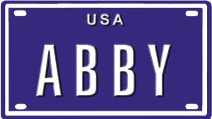 Blue Sabre Inc.